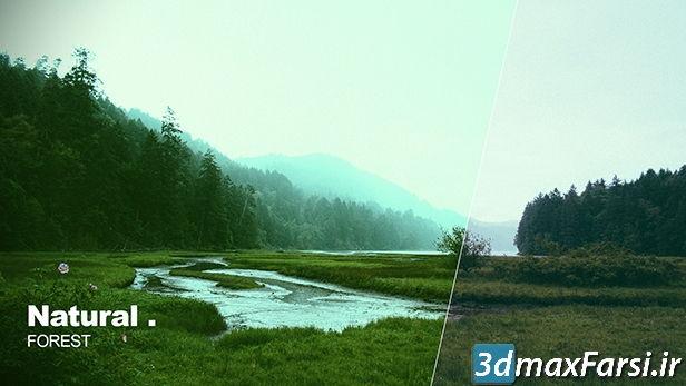 Fast Color Correction در اصلاح رنگ و نور فیلم پریمیر